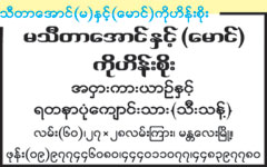 Thidar Aung (Ma) & (Maung) Ko Hein Soe Buses [Highway]